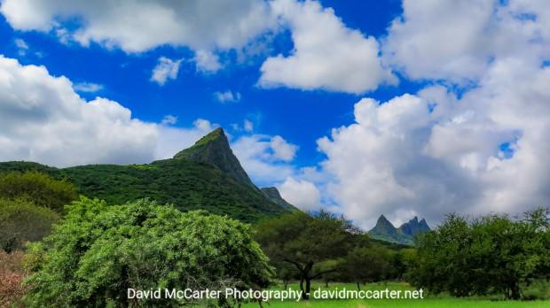 McCarter Photography - 2019