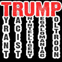 Trump 2020@0.5x